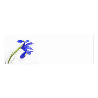 Wedding Place Name Card - purple iris flower Double-Sided Mini Business Cards (Pack Of 20)