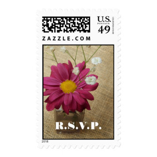 Wedding Postage - Daisy In Apothecary Bottle