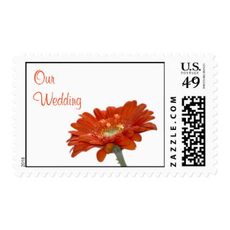 Wedding Postage Stamp - Orange Daisy Gerbra Flower