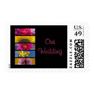 Wedding Postage Stamp - Pink & Yellow Macro Flower