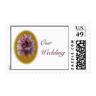 Wedding Postage Stamp - Striped Daisy Gerbra pink