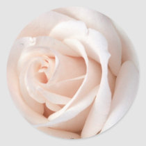 Wedding Rose Classic Round Sticker