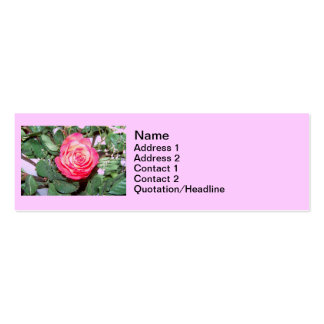 Wedding Rose Photography Business Card