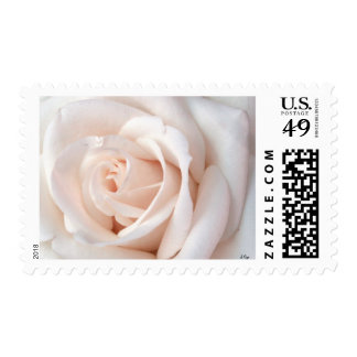 Wedding Rose Postage
