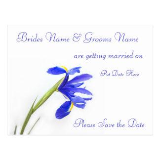 Wedding Save The Date Postcard -purple iris flower