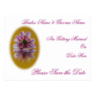 Wedding Save The Date Postcard - Striped Daisy Ger