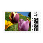 Wedding Stamps Flowers 34 Tulips Floral Postage