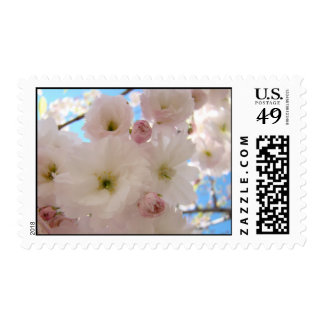 Wedding Stamps Fluffy Pink FLOWER Blossoms