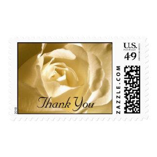 Wedding Thank You Cream  Rose Stamp