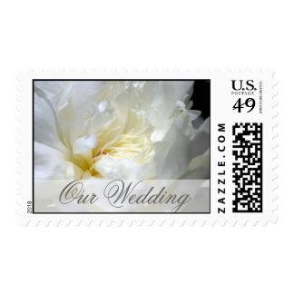 Wedding White Flower Postage Stamp