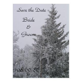 Wedding Winter Pine Tree Postcard