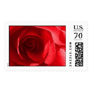 Weddings Artistic Invitations Big Postage Stamp