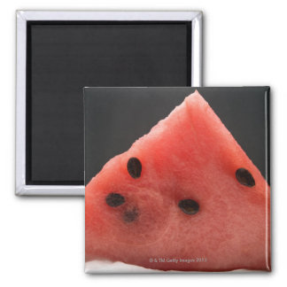 Wedge of Watermelon Magnet
