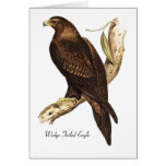 Wedge Tailed Eagle.  A Magnificent Bird of Prey. Greeting Card