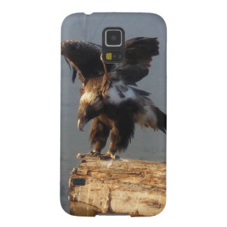 Wedge Tailed Eagle - Phone Case