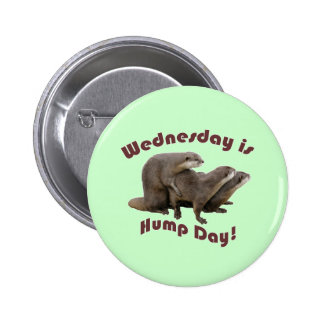 Wednesday is Hump Day! Pinback Button