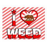 Weed, CA Postcard