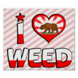 Weed, CA Print