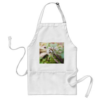 Weed Flower - Bittercress Adult Apron