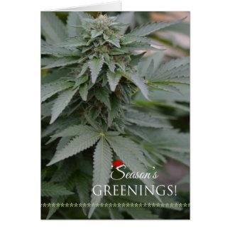 Weed Season's Greenings/Marijuana Christmas Card