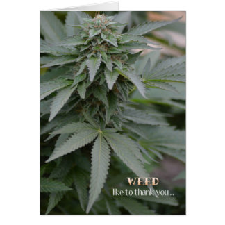 Weed Thank You Card