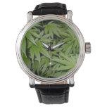 Weed Watch Relojes