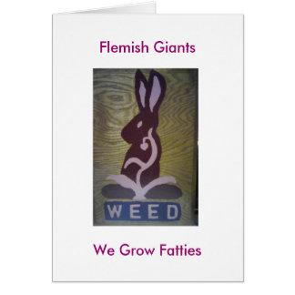 Weed We Grow Fatties, Flemish Giants Card