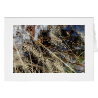 Weeds? Card