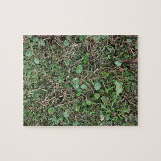 Weeds in Grass Field Jigsaw Puzzle