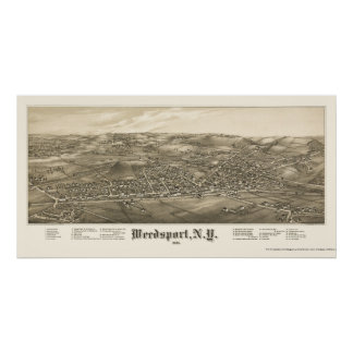 Weedsport mapa panorámico de NY - 1885 Posters