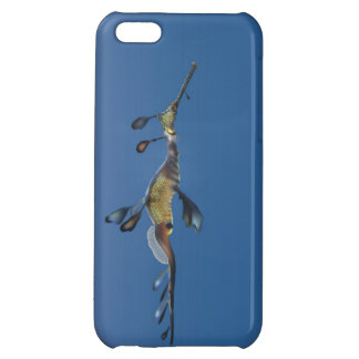 Weedy Seadragon Cover For iPhone 5C