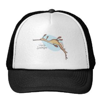 Weedy Seadragon Hat