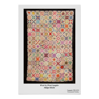 Week by Week Sampler Blocks Poster