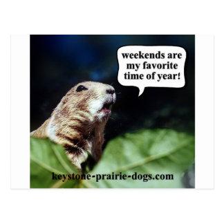 Weekends Postcard