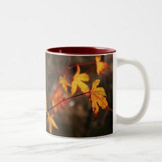 Weeping Autumn Mug