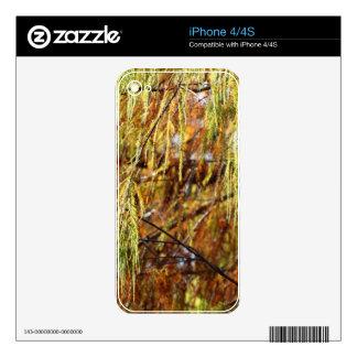 Weeping Autumn Splendor Skin For iPhone 4S