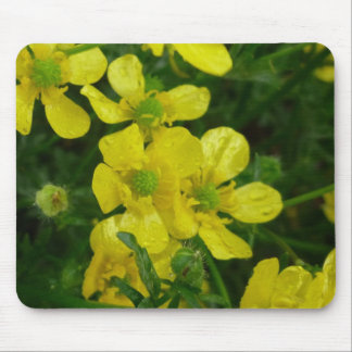 Weeping Buttercups Mousepad