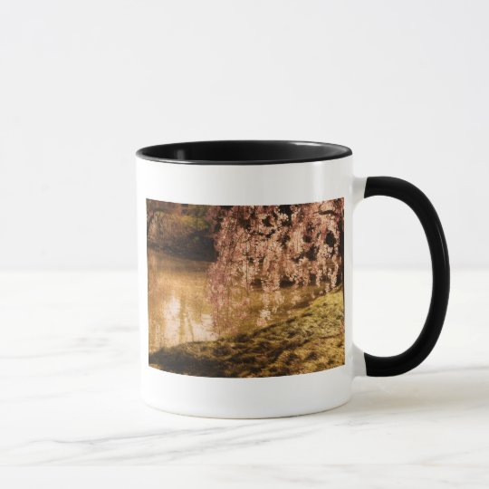 Weeping Cherry Blossoms in Sunlight Mug