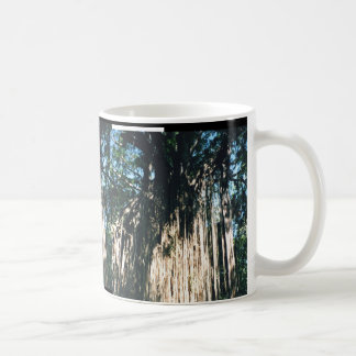 Weeping Fig Classic White Coffee Mug
