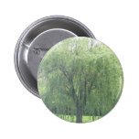 Weeping WIllow Pin