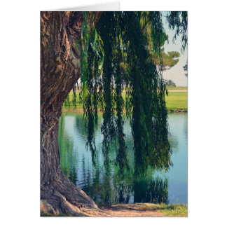 Weeping Willow Tree by Lake Greeting Card