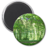 Weeping Willows with Pond Fridge Magnets