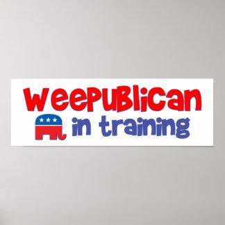 WeePublican en el entrenamiento embroma la bandera Póster