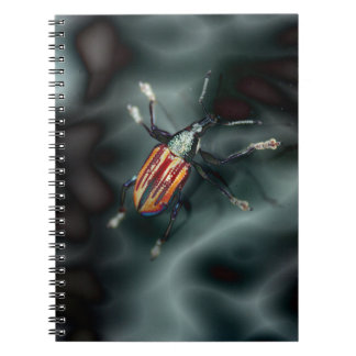 Weevil Beetle Insect Bug Notebook