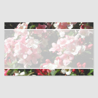 Weigela. Pretty Pink Flowers. Rectangular Sticker