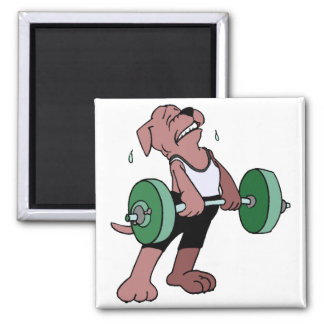 Weightlifter Dog 2 Inch Square Magnet