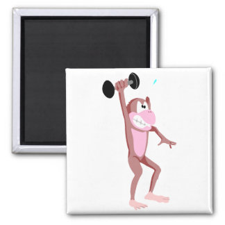 Weightlifter Monkey 2 Inch Square Magnet