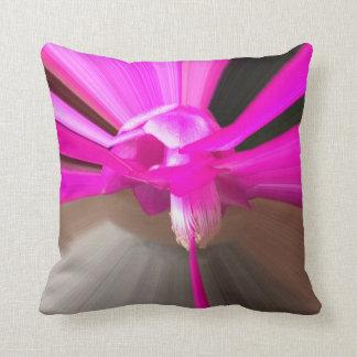 Weihnachtskaktus almohada lila flor