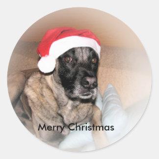 weihnachtskarte con hund pegatina redonda