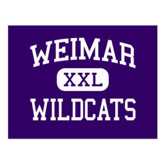 Weimar - gatos monteses - joven - Weimar Tejas Postales